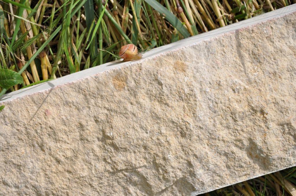 MA08H08010C Moellon Bourgogne rocamat 1